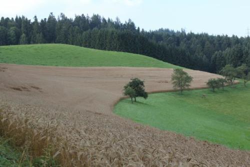 Heimiswil 2014